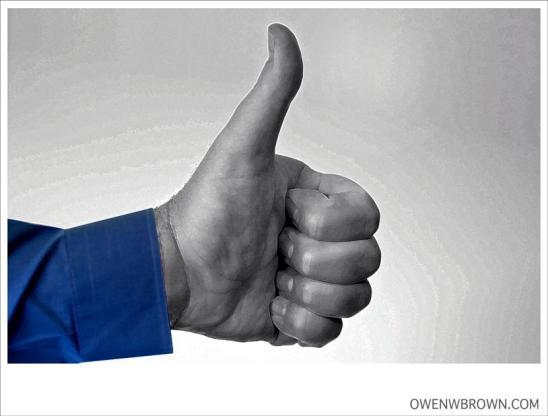 Facebookiensis, Facebook, soziale Netzwerke, alternative Medien, Medien, Twitter, Homo Facebookiensis