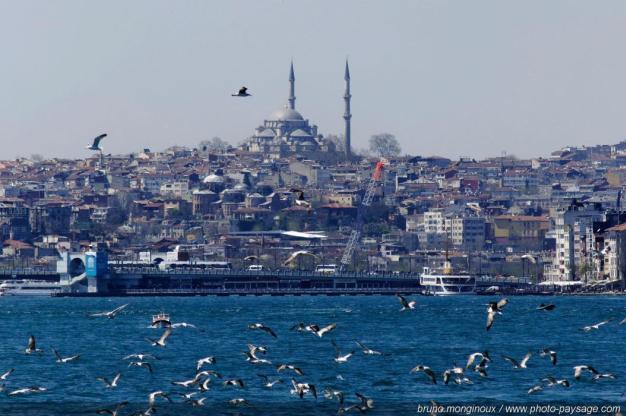 Kulturelle Vielfalt, Türkei, Leonardo Dalessandr, Regisseur, Kultur