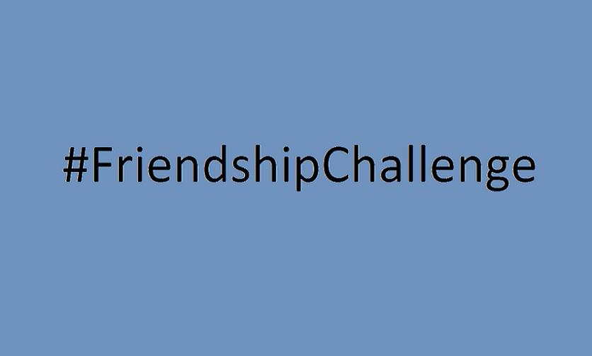 FriendshipChallenge, Challenge, Blogger, Integrationsblogger, Integration