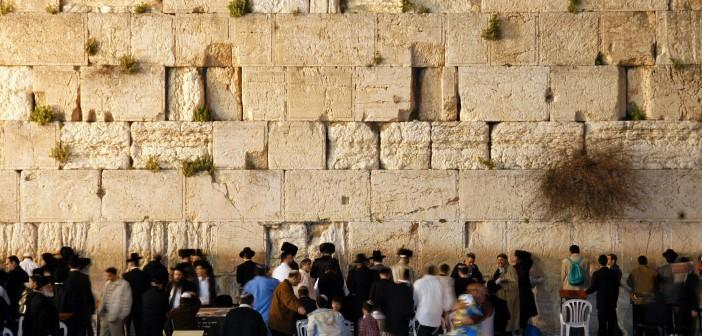 Jersualem, Bildung, Reisebuch, Frühling in Jerusalem