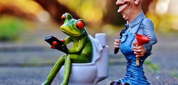 Toilette, Entspannung, Ruhestätte, Phänomen