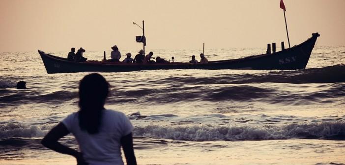 Flüchtlinge, AFD, Flüchtlingskrise, Fachkräfte